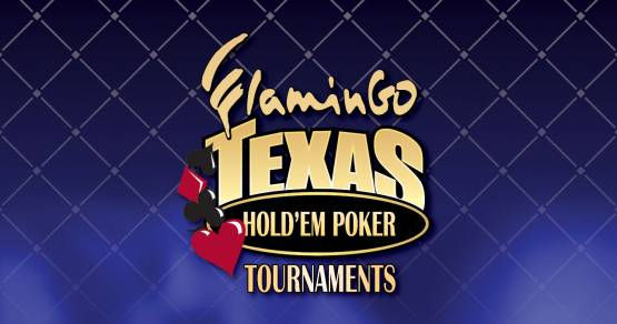 TEXAS HOLD'EM POKER TOURNAMENTS